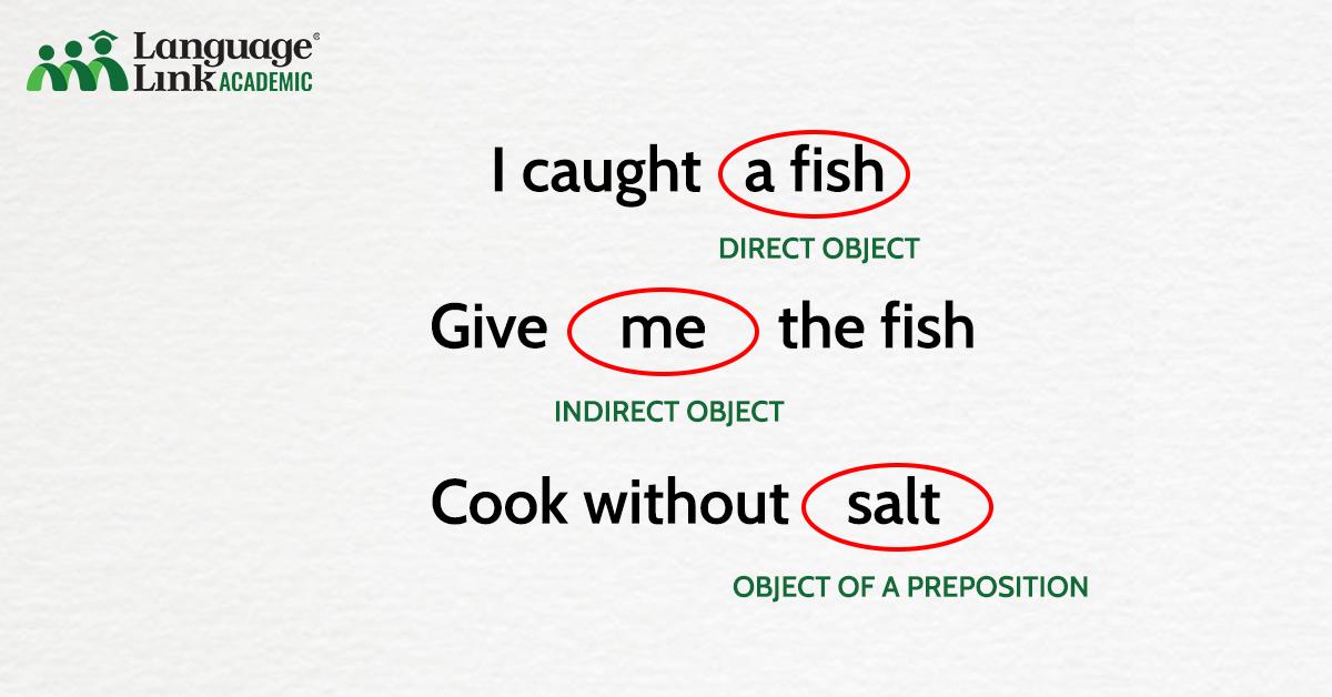 phân loại tân ngữ