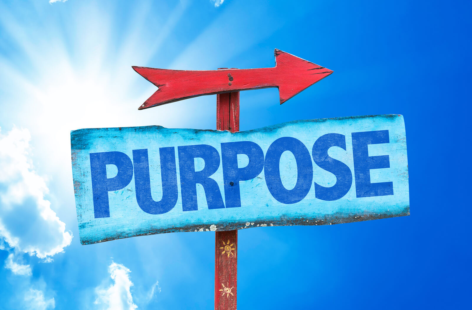 Clause of purpose