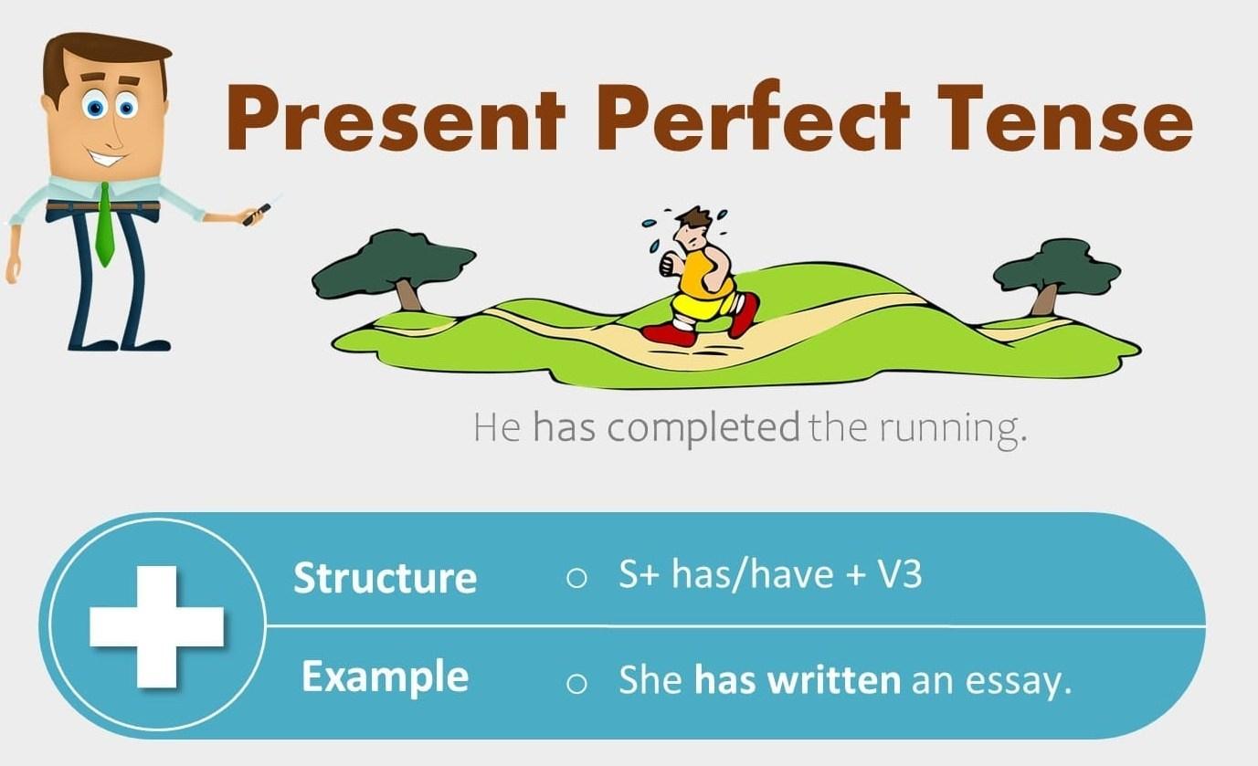 Thì hiện tại hoàn thành được học trong chương trình ngữ pháp tiếng anh lớp 8