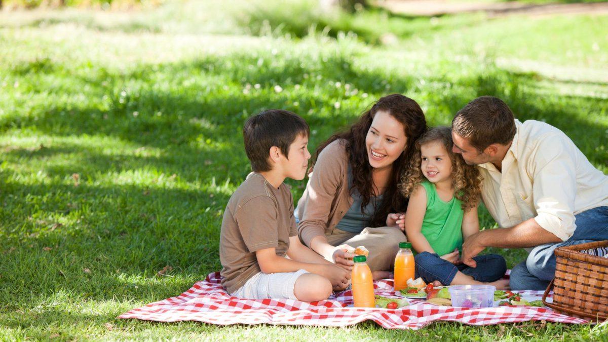 một gia đình đang cùng nhau đi picnic - hình minh họa cho ON HOLIDAY hay IN HOILIDAY