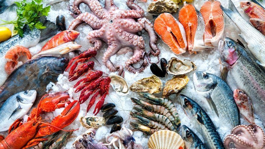 """""""Học nhanh – nhớ lâu các loại hải sản bằng tiếng Anh"""" đã bị khóa Học nhanh – nhớ lâu các loại hải sản bằng tiếng Anh"""
