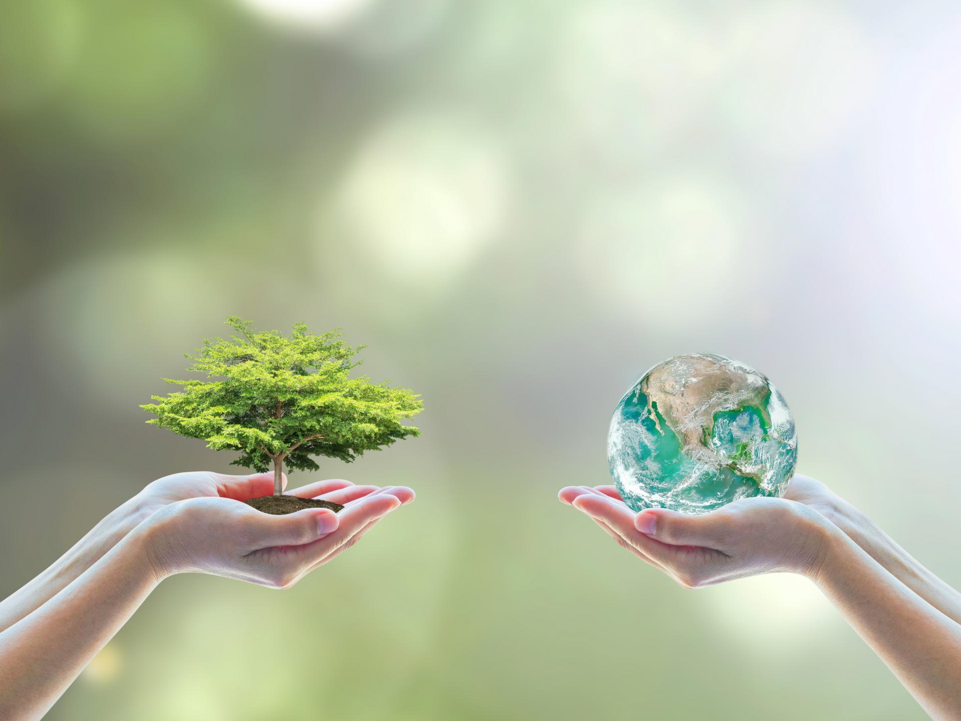câu hỏi về môi trường bằng tiếng Anh