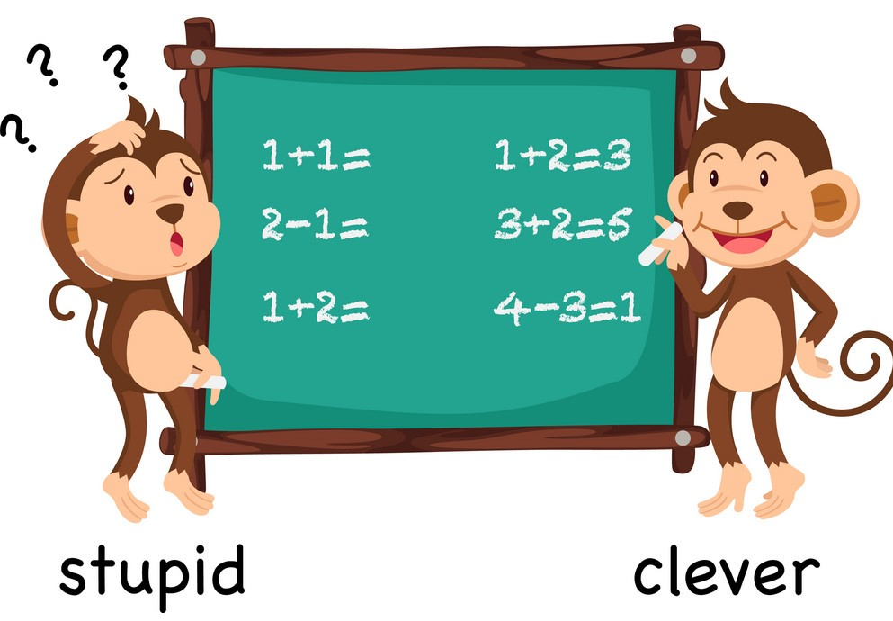 36. clever - stupid