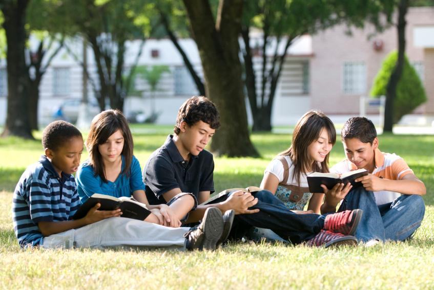 Các đầu sách ngữ pháp tiếng Anh cơ bản cho người mới học là tài liệu học tập không thể bỏ qua