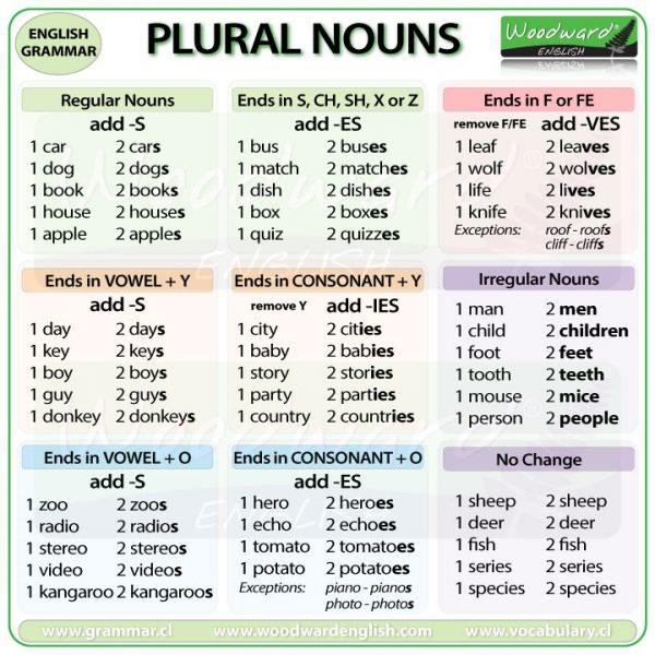 There are đi cùng plural noun (Danh từ số nhiều)